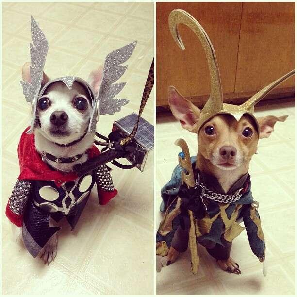 Loki és Thor