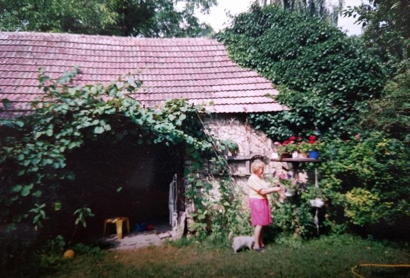 henyei ház