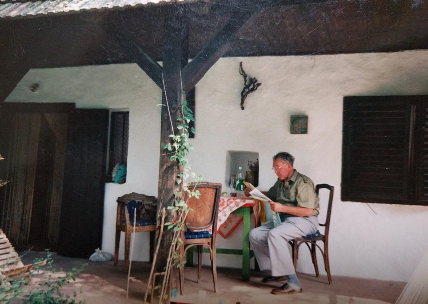 a henyei ház